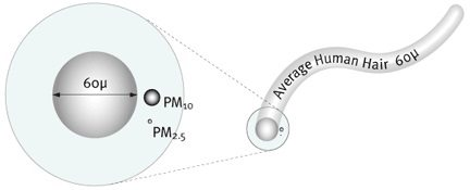 Image showing air particulate size vs. human hair