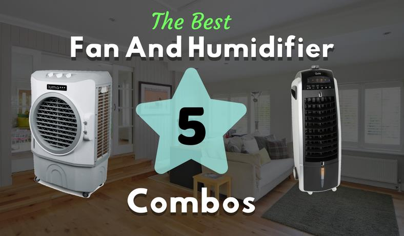 Best fan and humidifier combos featured image