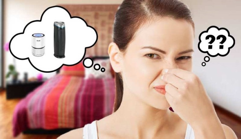 Does an air purifier remove smells featured image