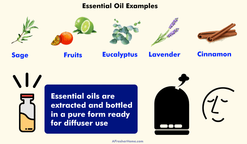 Diagram showing examples of essential oils used in diffusers