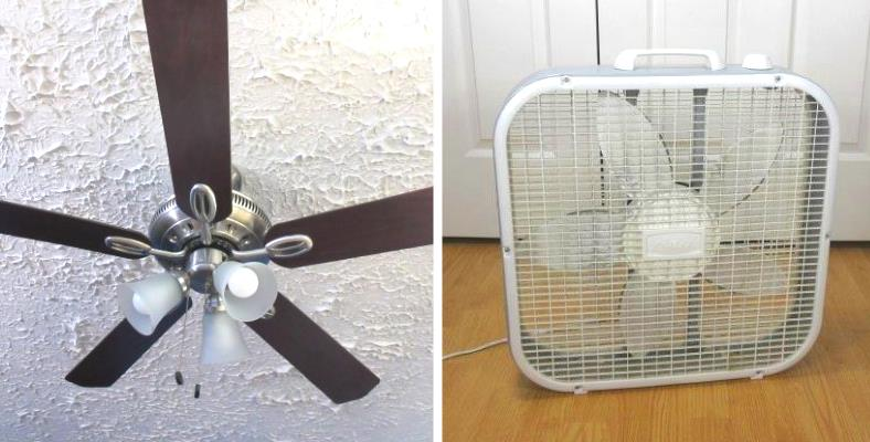 Ceiling fan vs box fan comparison image
