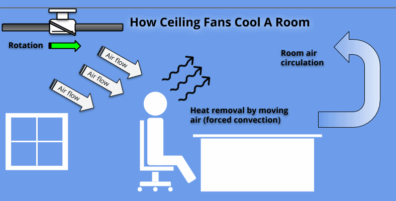 Diagram showing how a ceiling fan cools a room