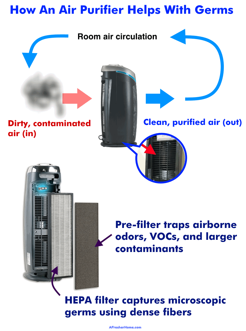 diagram showing how an air purifier works for germs