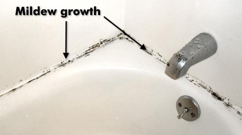Image showing an example of typical bathroom mildew