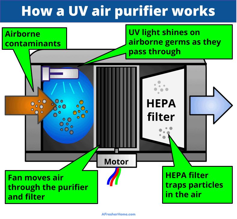 How does a UV air purifier work diagram