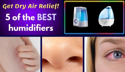 The Best Humidifiers For Dry Skin, Nose, And Eye Relief