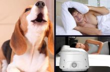 5 Of The Best White Noise Machines For Dog Barking – Get Relief Now!
