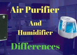 What's The Difference Between An Air Purifier And Humidifier?