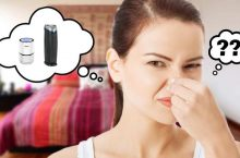 Does An Air Purifier Remove Smells? Dealing With Common Odor Problems